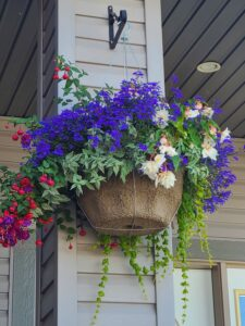 Grown To Order Planters 16
